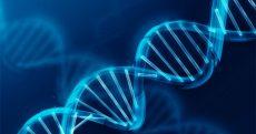 Microsoft spende per lo storage genetico